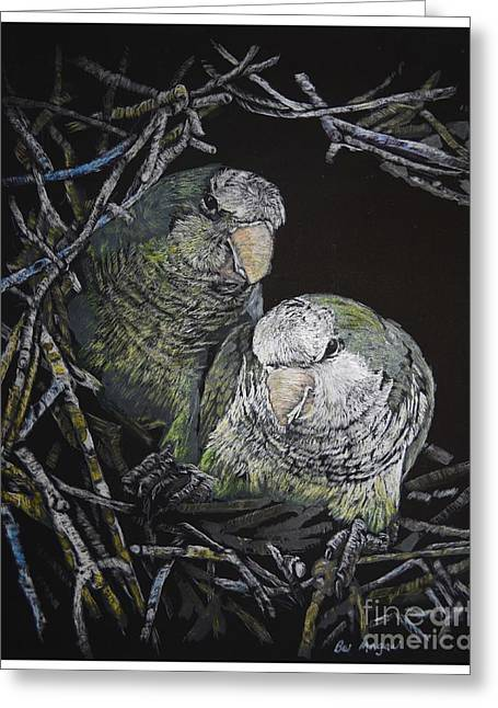 Baby Monk Parrots Greeting Card
