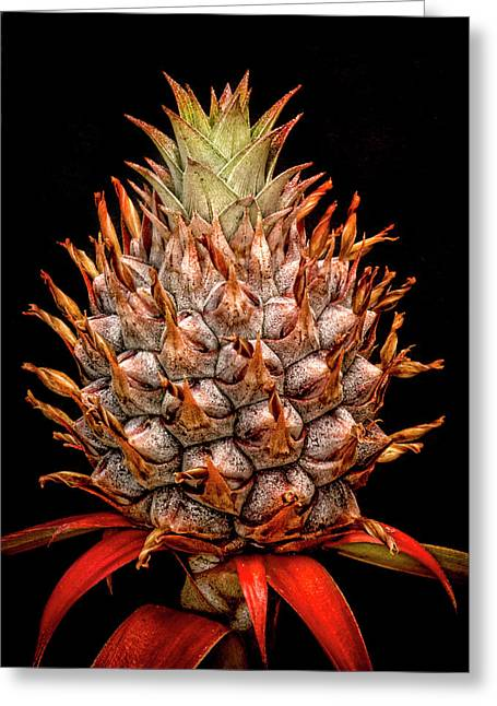Baby Pineapple Greeting Card by Heather Applegate