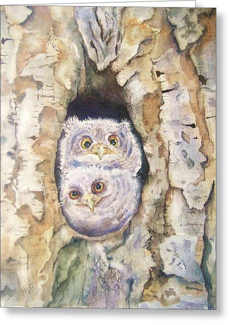Baby Screech Owls Greeting Card by Patricia Pushaw