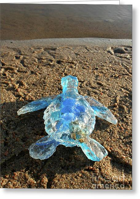 Baby Sea Turtle From The Feral Plastic Series By Adam Long Sculp Greeting Card