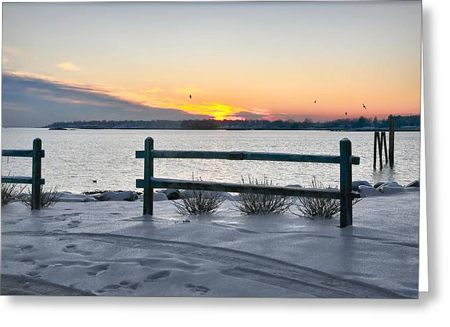 Back Bay Greeting Card by Diana Angstadt