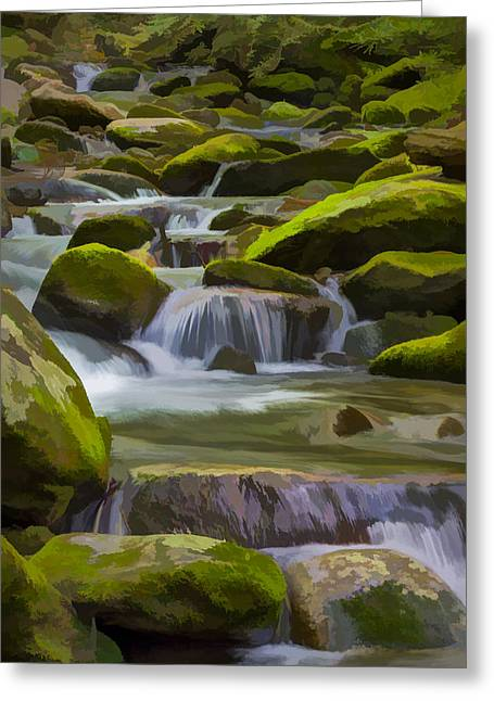 Back Country Stream II Greeting Card by Jon Glaser