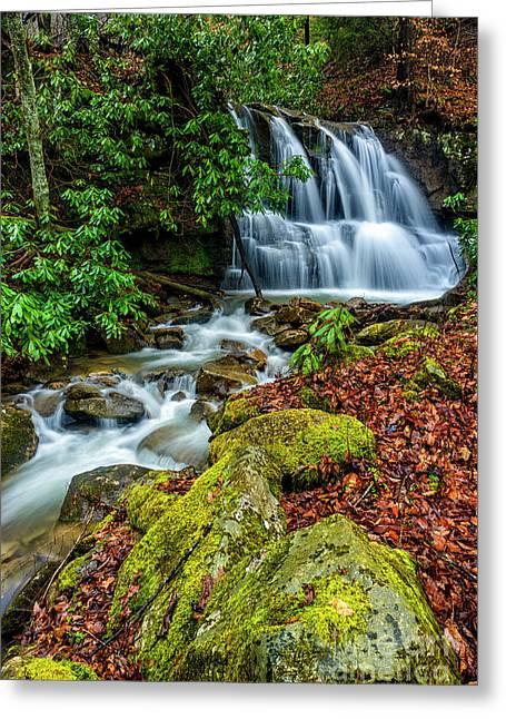 Back Fork Waterfall  Greeting Card