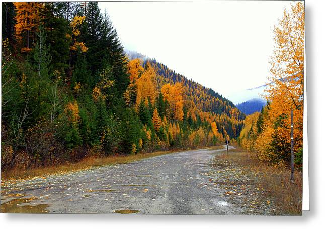 Back Road Color Greeting Card