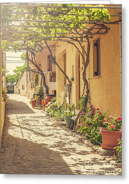 Back Street In Cretan Village. Greeting Card by Sophie McAulay