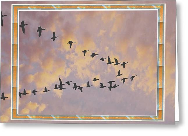 Back To Home Sunset Time For Birds Greeting Card