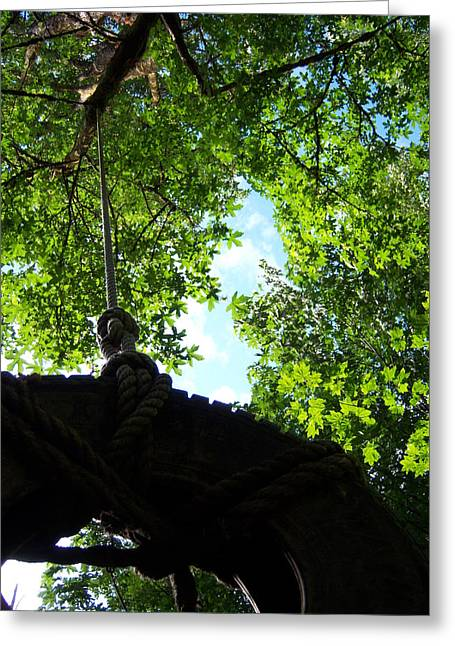 Back Under The Tire Swing Greeting Card by Ken Day
