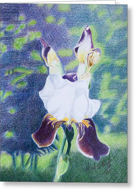Back Yard Iris Greeting Card