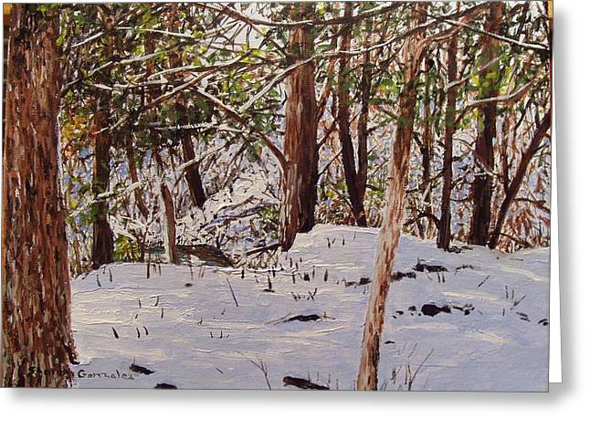Back Yard Snow Greeting Card by Sharon  De Vore