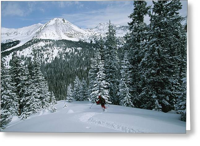 Model Photographs Greeting Cards - Backcountry Skiing Into An Evergreen Greeting Card by Tim Laman