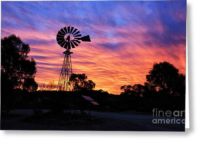 Backcountry Sunrise Greeting Card by Genevieve Vallee