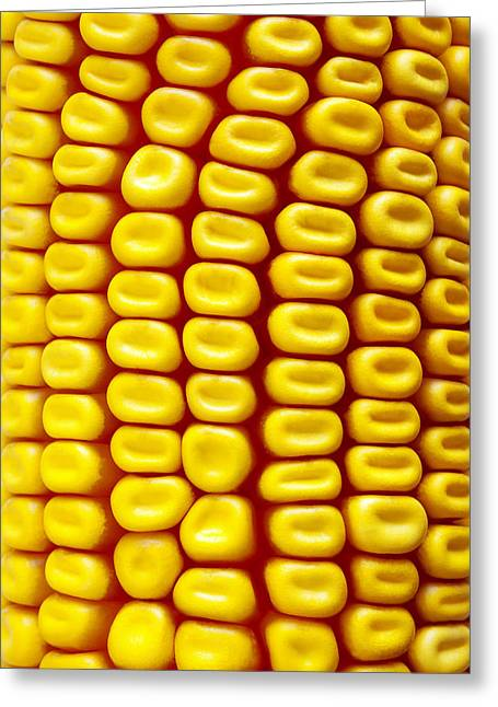 Corn Seeds Greeting Cards - Background Corn Greeting Card by Carlos Caetano