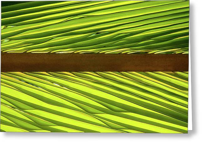Palm West Greeting Card