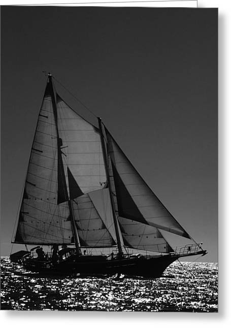 Backlite Schooner Greeting Card