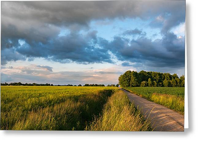 Greeting Card featuring the photograph Backroad Between The Fields by Dmytro Korol