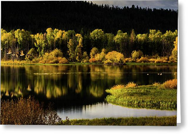 Backwater Blacks At Oxbow Bend Greeting Card by TL Mair