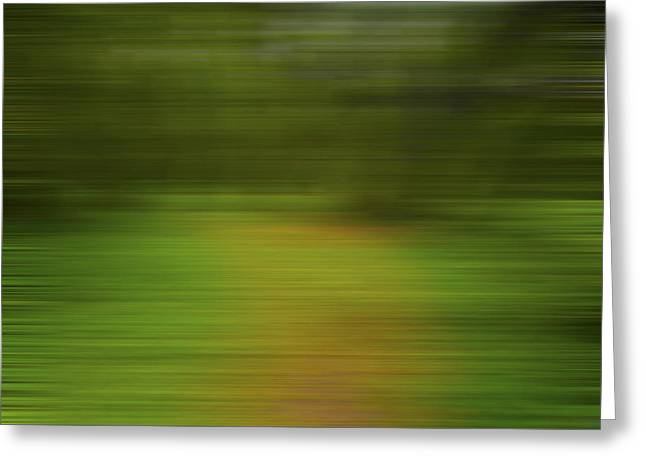 Backwoods Path X Greeting Card by Jon Glaser