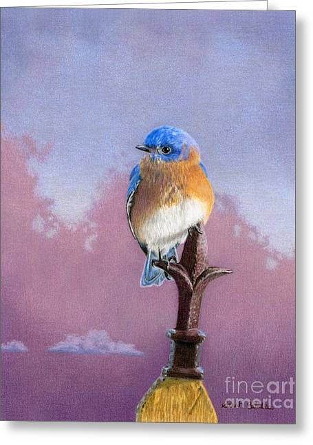 Backyard Bluebird Greeting Card by Sarah Batalka