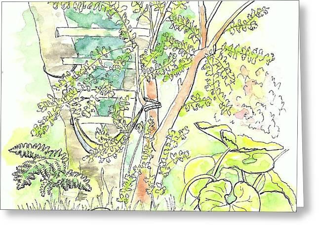 Backyard Greeting Card by George I Perez