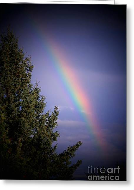 Backyard Rainbow Greeting Card by Marjorie Imbeau
