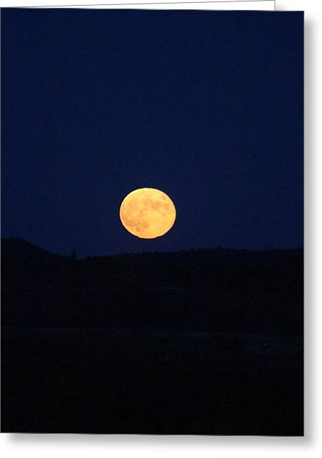 Bad Moon Rising Greeting Card by Julie Smith