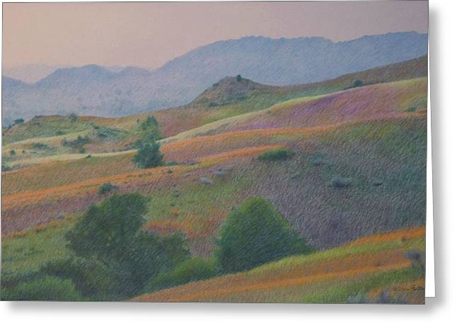 Badlands In July Greeting Card