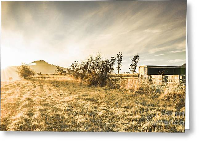 Bagdad Crisp Winter Countryside Greeting Card by Jorgo Photography - Wall Art Gallery