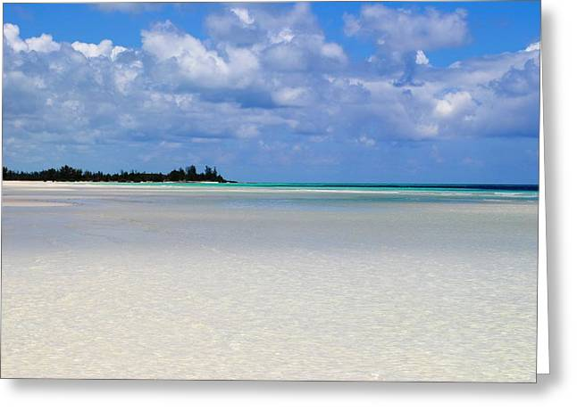Bahamas Greeting Card by Karla Kernz
