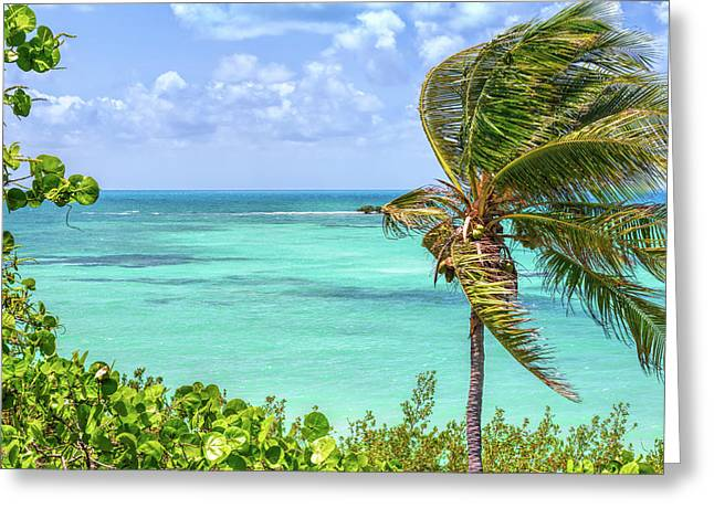 Bahia Honda State Park Atlantic View Greeting Card