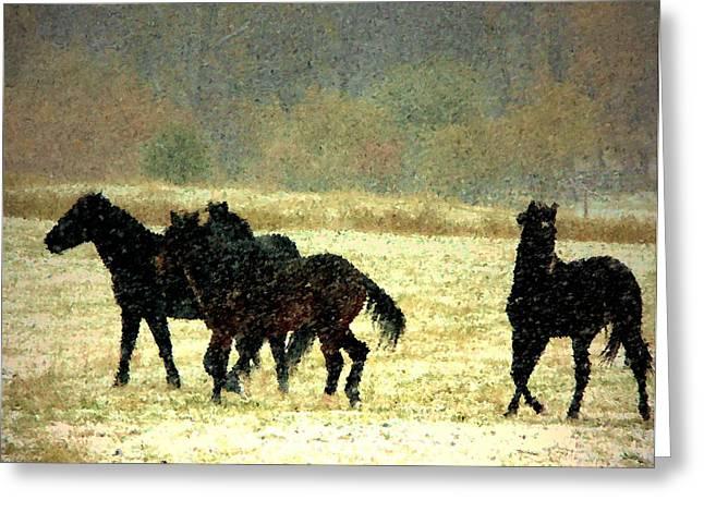 Bailando De Los Caballos En Viento Y Nieve Greeting Card by Anastasia Savage Ealy