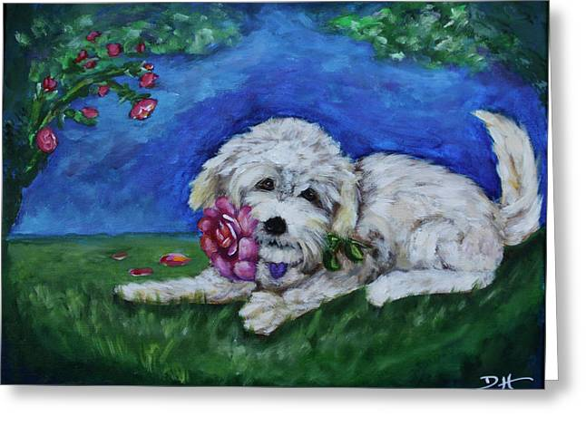 Bailey Greeting Card by Diana Haronis