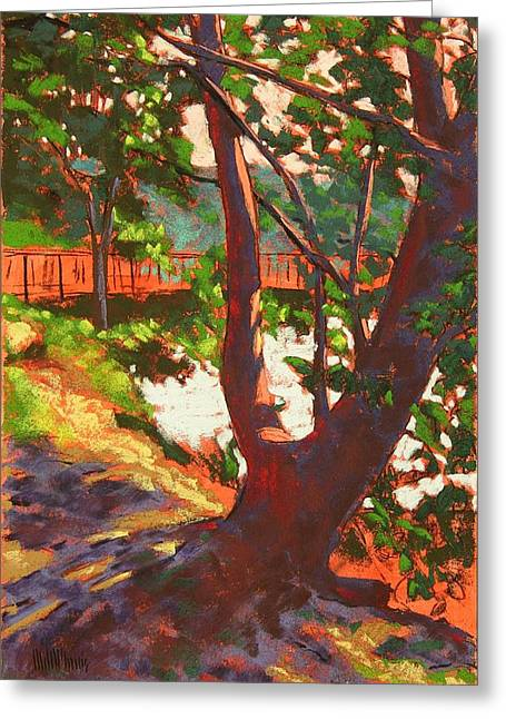 Pacific Northwest Pastels Greeting Cards - Bainbridge Madrona 2 Greeting Card by Mary McInnis