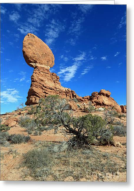 Balanced Rock And Desert Tree Greeting Card