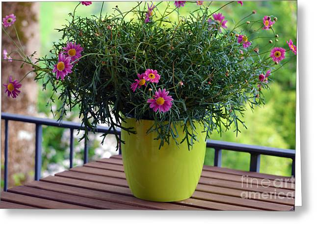 Greeting Card featuring the photograph Balcony Flowers by Susanne Van Hulst