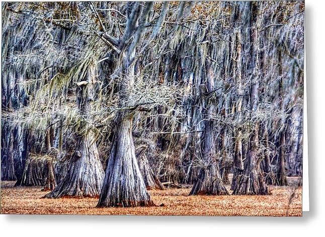 Greeting Card featuring the photograph Bald Cypress In Caddo Lake by Sumoflam Photography