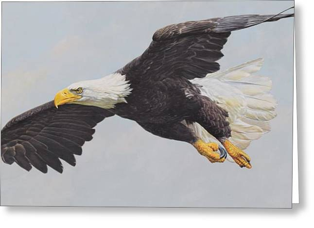 Greeting Card featuring the painting Bald Eagle by Alan M Hunt
