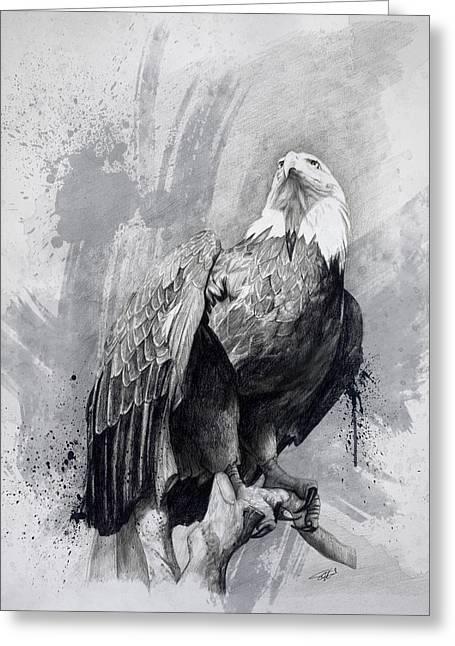 Bald Eagle Drawing Greeting Card