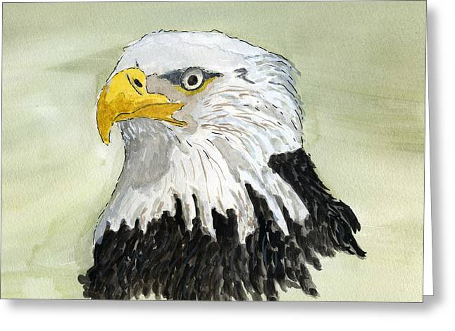 Wild Life Drawings Greeting Cards - Bald Eagle Greeting Card by Eva Ason