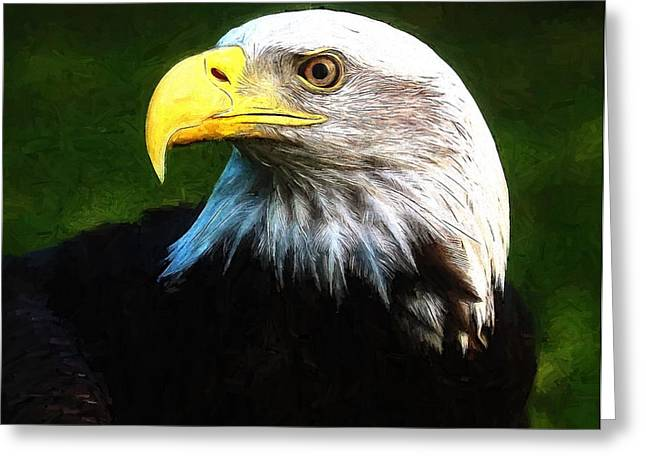 Bald Eagle Face Greeting Card by Dan Sproul