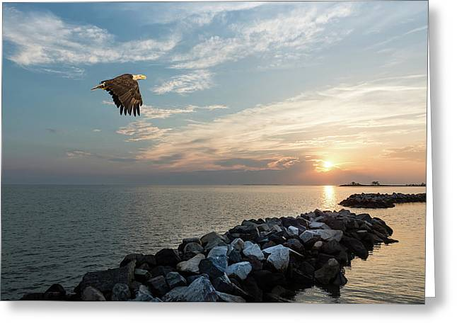 Bald Eagle Flying Over A Jetty At Sunset Greeting Card