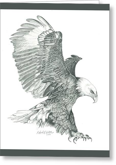Bald Eagle In A Dive Greeting Card
