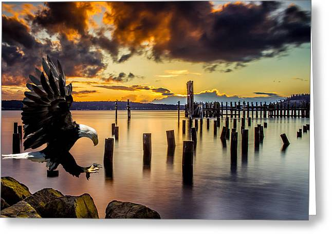 Bald Eagle Landing At Beach As Sun Sets Greeting Card