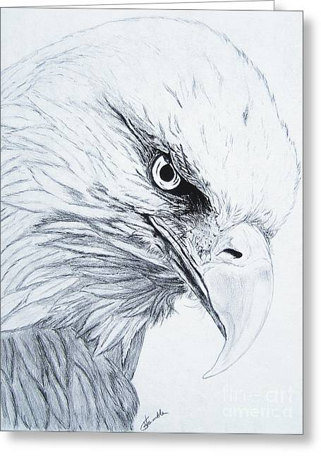 Bald Eagle Greeting Card by Nancy Rucker