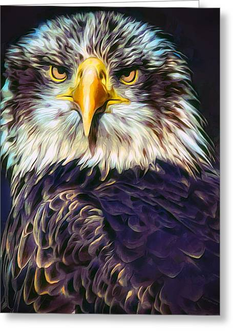 Bald Eagle Portrait Greeting Card by Scott Wallace