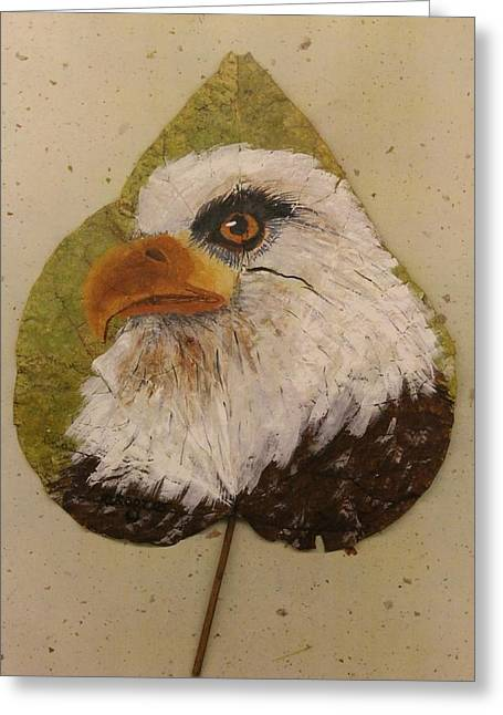 Bald Eagle Side Veiw Greeting Card
