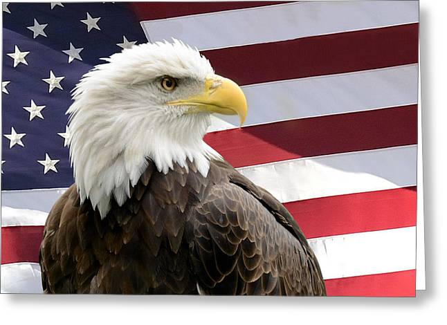 Bald Eagle With Flag Two Greeting Card