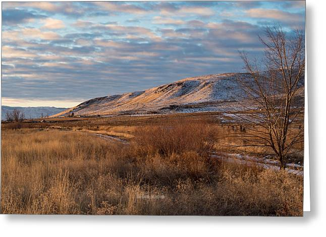 Bald Mountain At Dawn Greeting Card by The Couso Collection