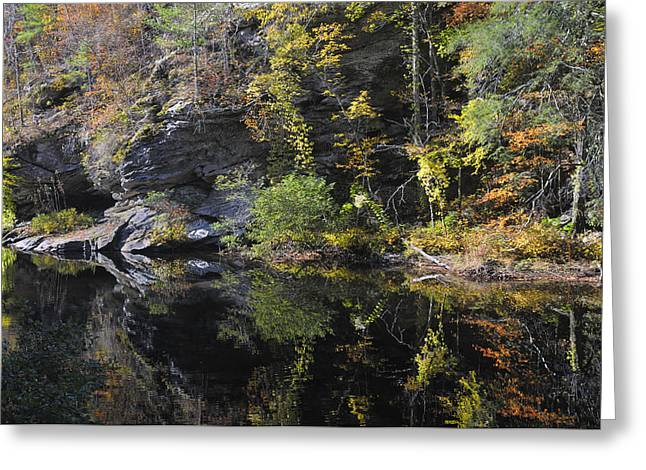 Bald River Autumn Reflection Greeting Card by Darrell Young