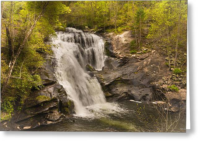 Bald River Falls Spring Greeting Card