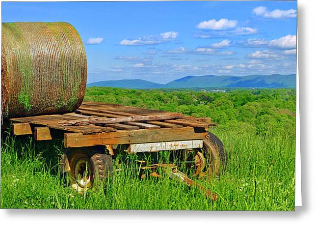 Bales At Rest Greeting Card
